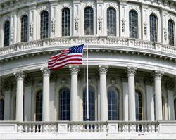 Flag flown over the capital